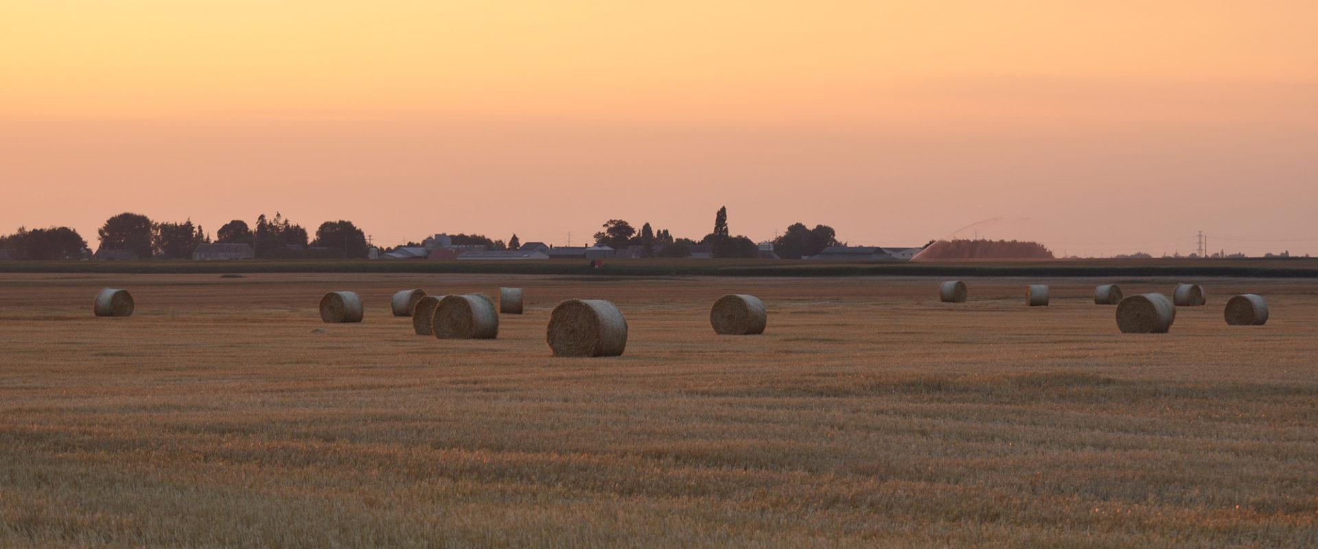 Levé de soleil près de Cravant dans le Loiret (45)