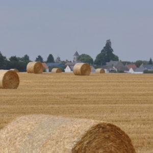 La commune de Cravant dans le Loiret en été